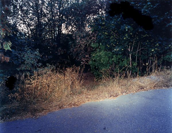 """2.7 1999 A path between Sivakkapolku and Hiiht'j'ntie, male, cause of death: Heroin overdose"", 2002, 80 x 100cm, c-print, diasec, ed. 6"